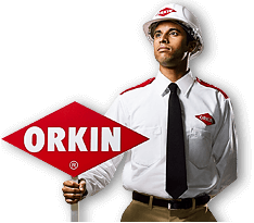 Orkin man